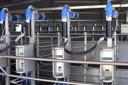 Automatic Teat Cup Removers