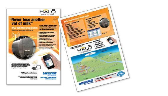 Halo brochure web