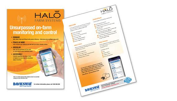 Halo brochure web2